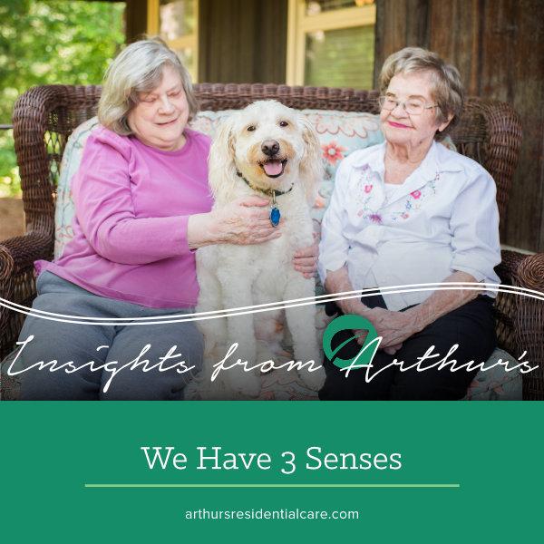 We have three senses